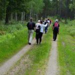 Vandring på Pilgrimsled Hjo-Kungslena