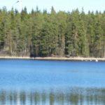 Hållsdammen, Hökensås, Tidaholm