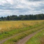 Pilgrimsled Hjo-Kungslena vid Kavlås, Tidaholm